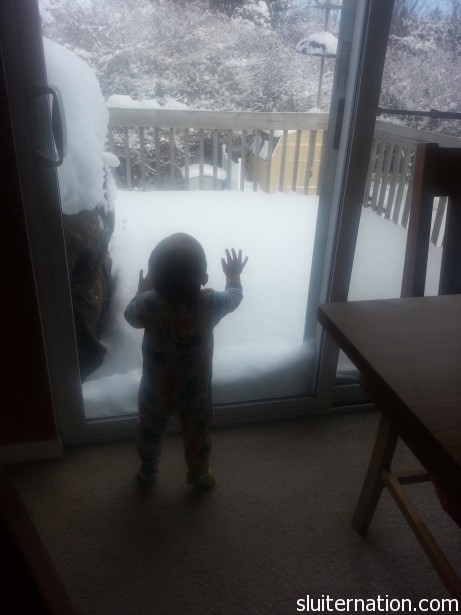 January 26: Charlie loves watching the snow and the birds.